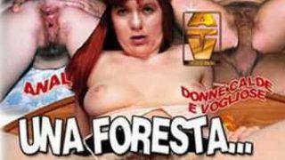 Una Foresta Tra Le Coscie Porno Streaming