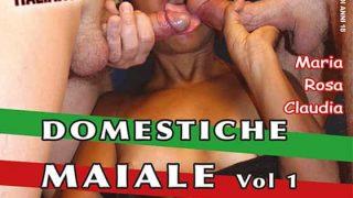 Domestiche Maiale Vol 1 CentoXCento Porno HD